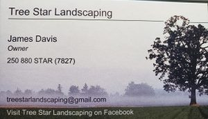 Tree Star Landscaping